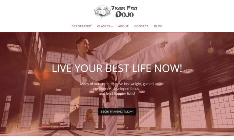 martial arts karate website theme #2